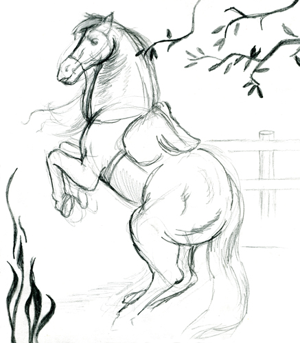 Horse Drawing Simple